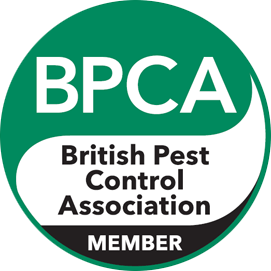 Why Should You Choose a BPCA Member